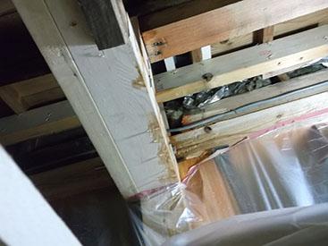 天井にシミや雨漏りなどがおきていませんか?